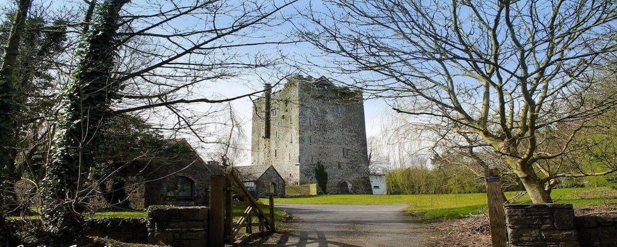 Ballybur Castle County Kilkenny